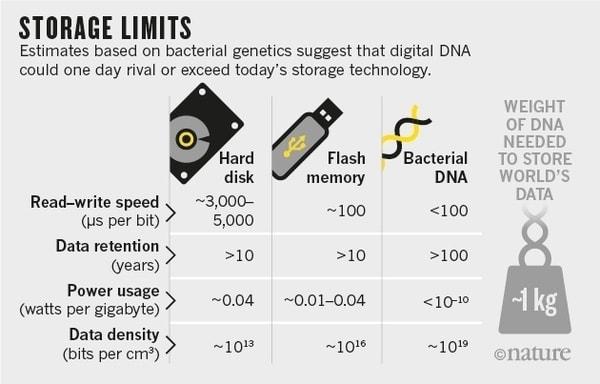 data storage on dna