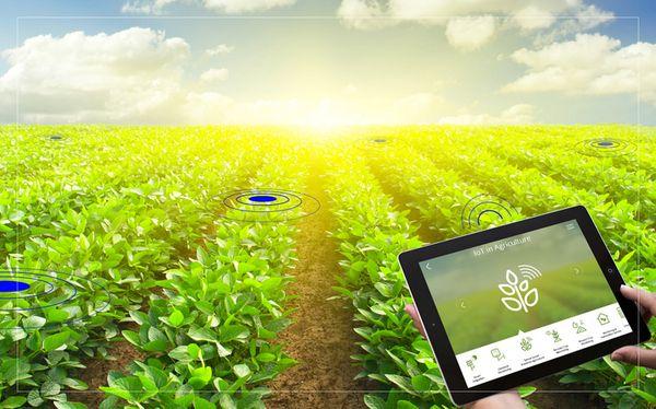 internet of things smart farming