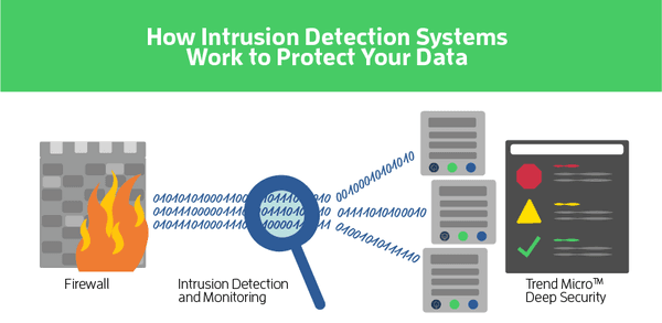 wireless intrusion detection systems