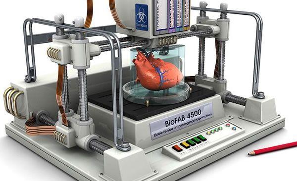 3d heart printing
