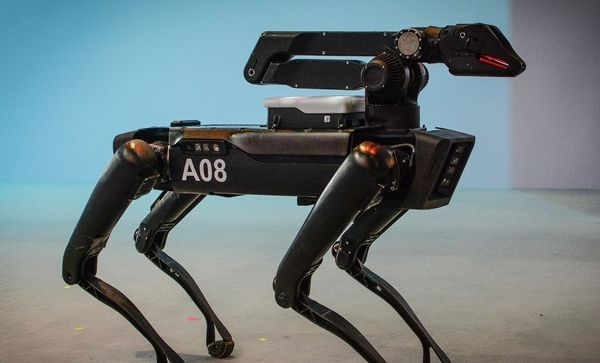 What Role Do Robots Have as Security Guards?