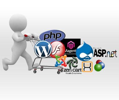 web server development